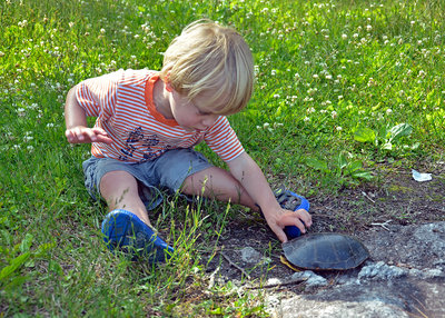 Child with a turtle