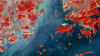 Hong Kong-Zhuhai-Macau Bridge, China, satellite image