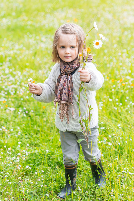 3-year-old girl holding a bouquet of wild flowers