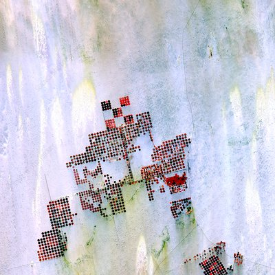 Centre-pivot irrigation in Sahara, satellite image