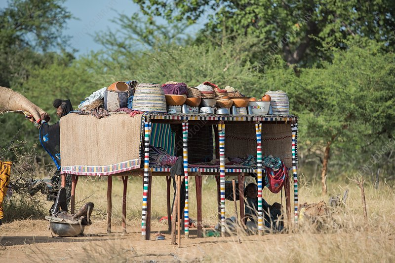Wodaabe bed and kitchen utilities