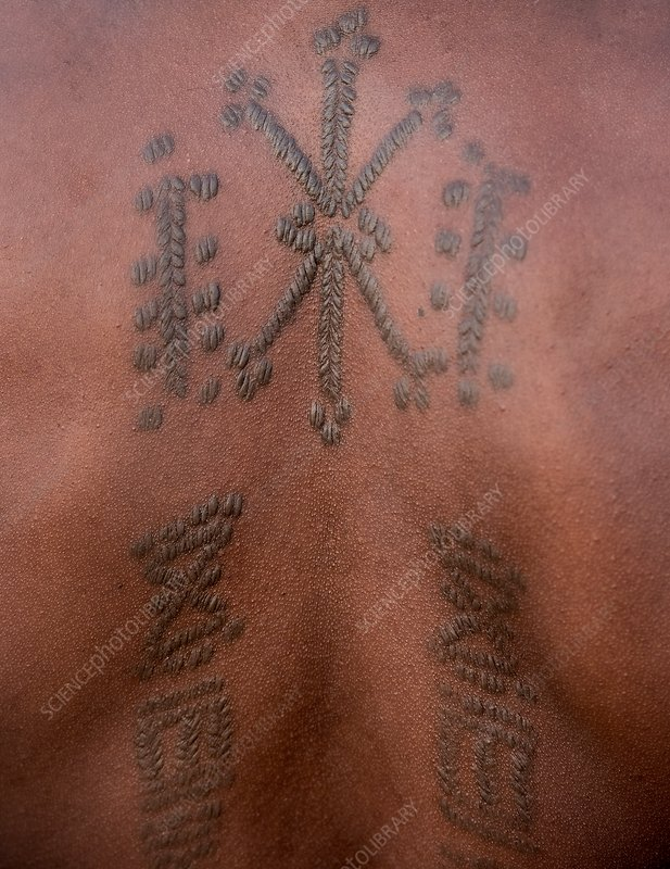 Body art on the back of a Wodaabe man