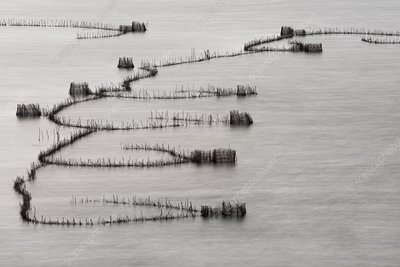 St Lucia traditional fishing traps
