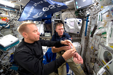 ISS astronauts and blood experiment, 2016