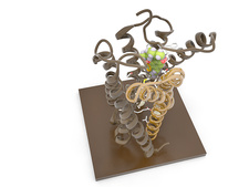 THC antagonist and CB1 receptor, molecular model