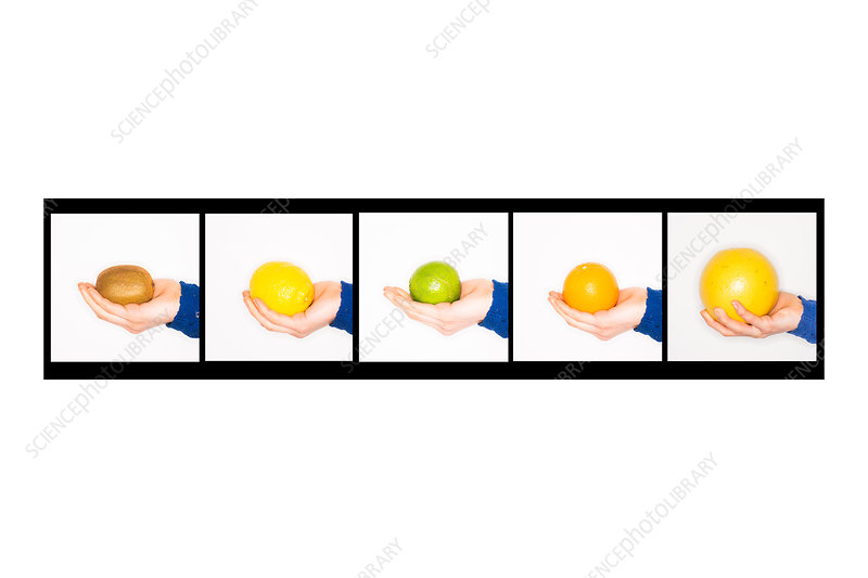 Woman's hand holding fruit