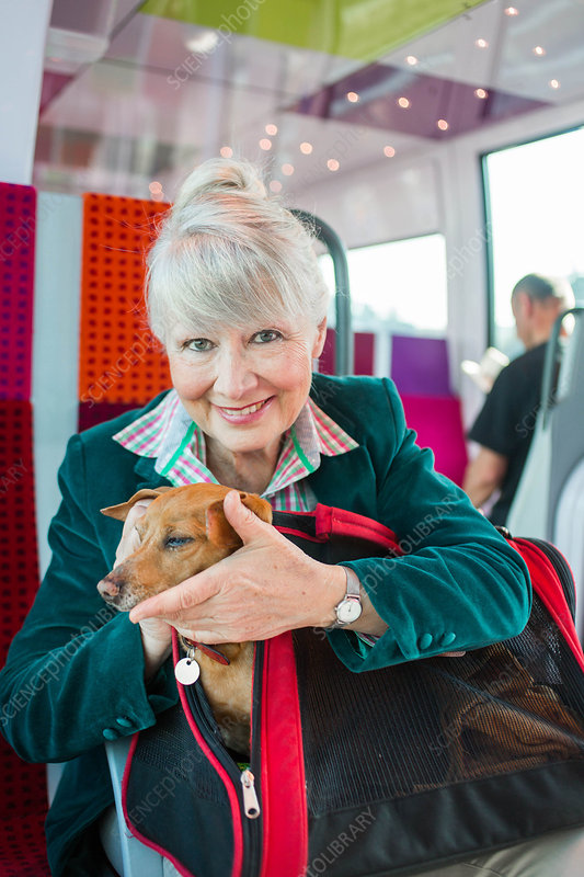 Senior woman on a train with her dog