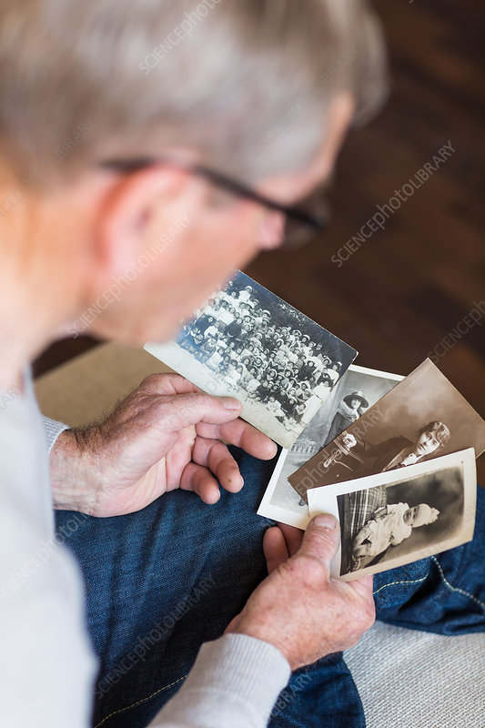 Man looking at old photographies