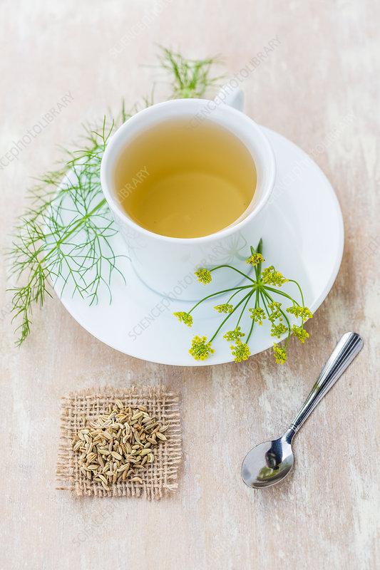 Fennel herbal tea