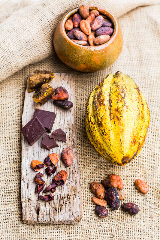 Cocoa pods and chocolate