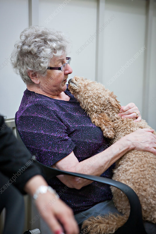 Dementia animal therapy