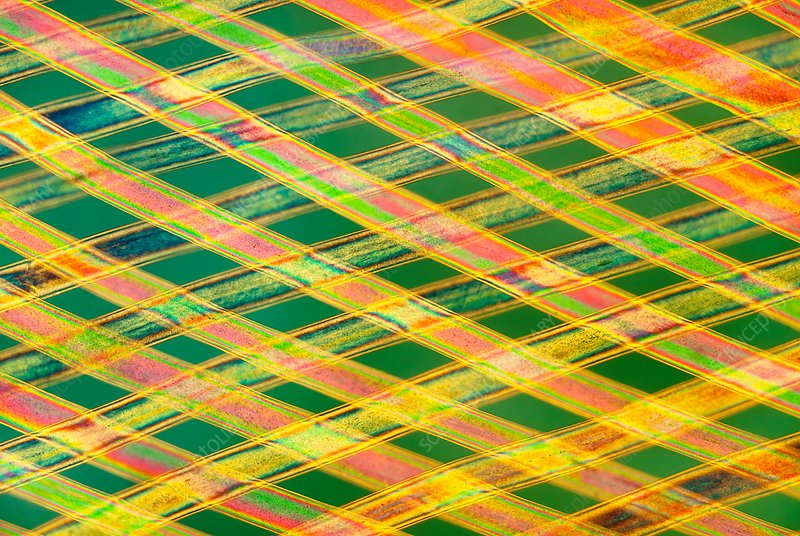Woven horse hair, polarised light micrograph