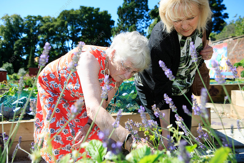 Woman with dementia at an allotment