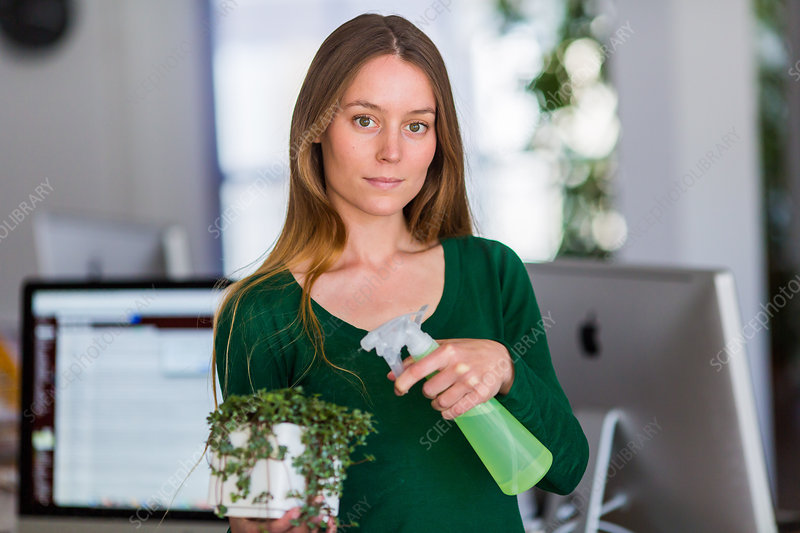 Woman spraying water on houseplant