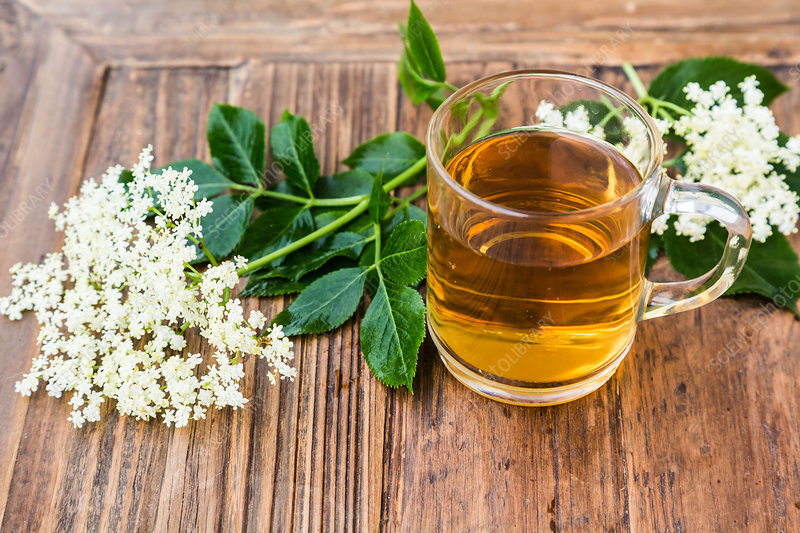 Elderflower tea