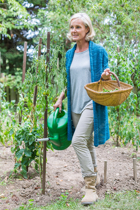 Woman gardening in her vegetable garden