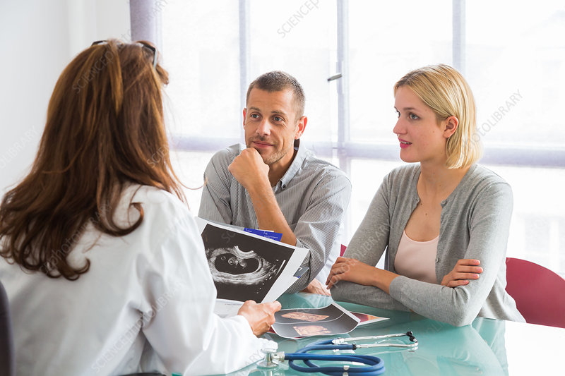 Doctor talking with a couple during consultation