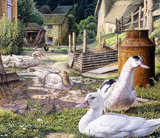 English farmyard, illustration