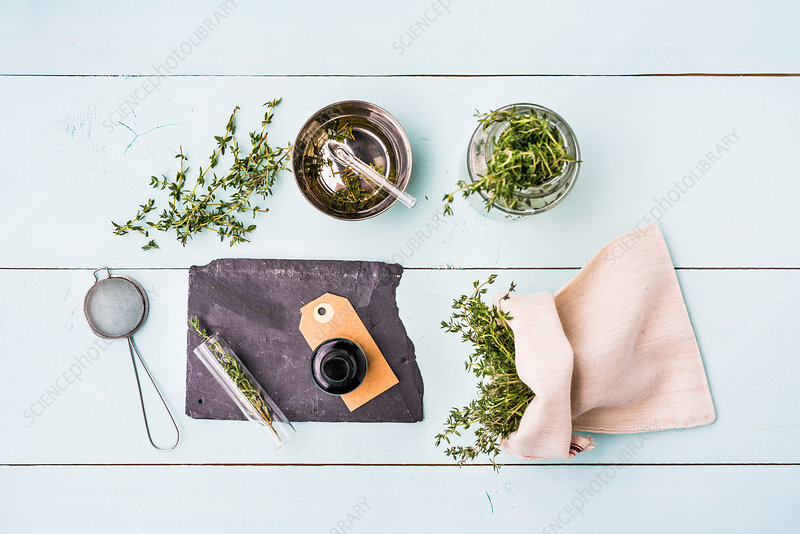 Essential oil of thyme (Thymus vulgaris)