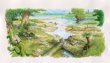 Early Cretaceous landscape, illustration