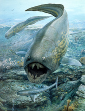 Dunkleosteus hunting sharks, illustration