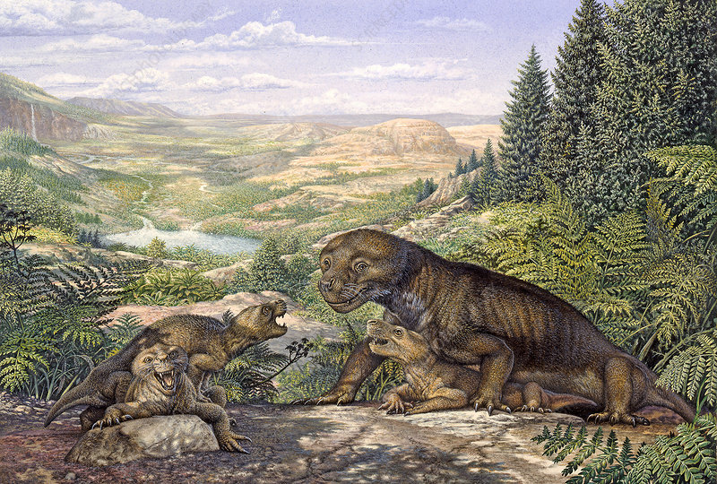 Thrinaxodon cynodont and pups, illustration