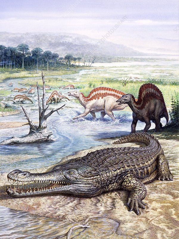 Sarcosuchus and Ouranosaurus reptiles, illustration