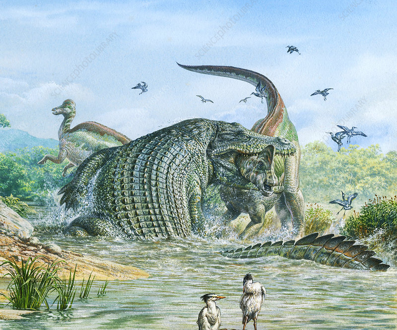 Deinosuchus reptile attacking a dinosaur, illustration