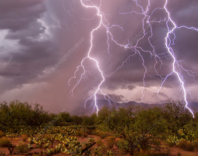 Close lightning strikes, Arizona, USA