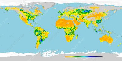 Global soil moisture, May 2016, satellite image