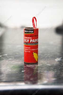 Flypaper container
