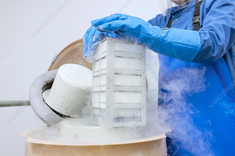 Cryopreservation in stem cell research