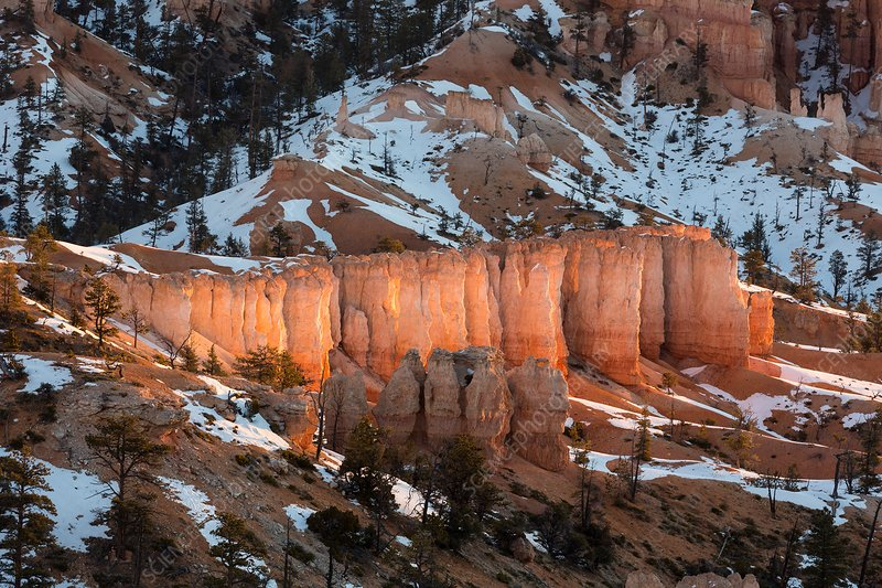 Sandstone hoodoos, Bryce Canyon National Park, Utah, USA