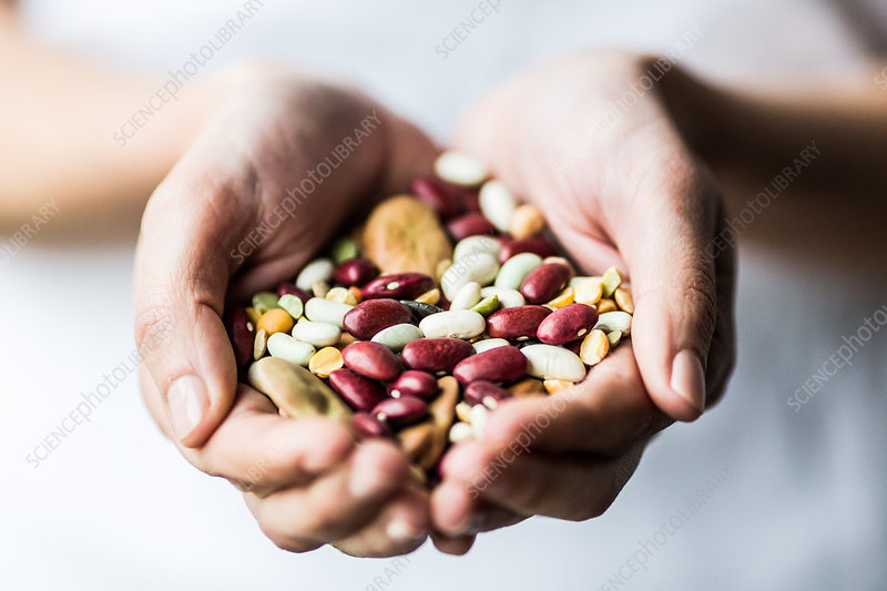 Woman holding assorted beans and pulse