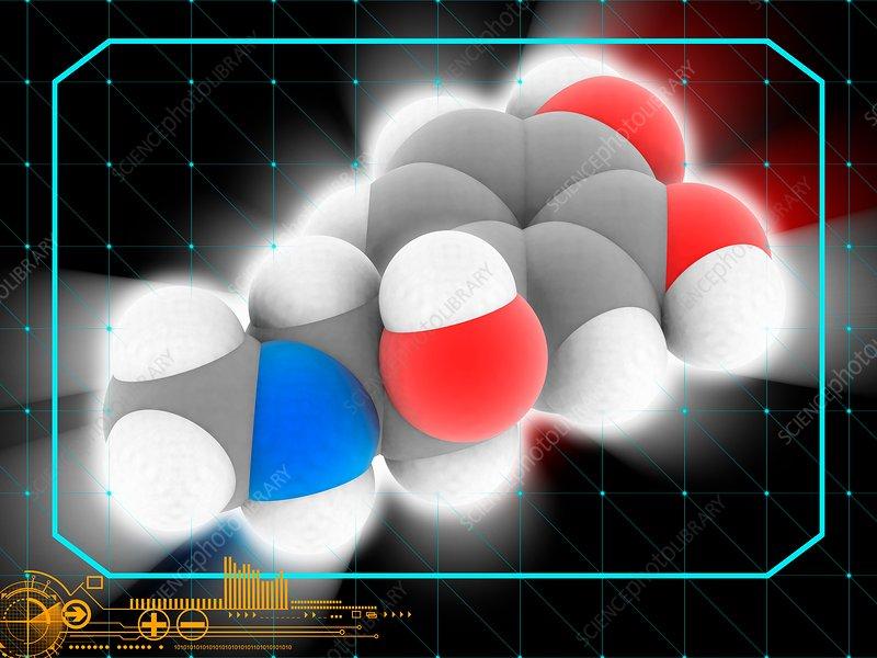 Epinephrine hormone molecule