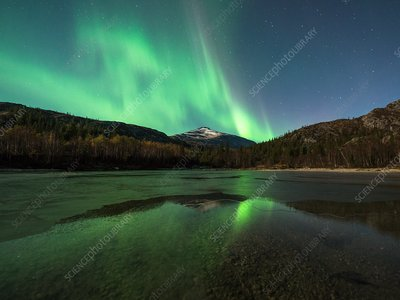 Aurora borealis over a shoreline