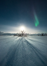 Moon and aurora borealis over snow