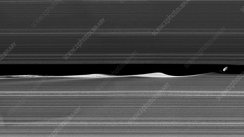 Daphnis and Saturn's rings, Cassini image