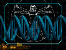 DNA and Vitruvian man, illustration