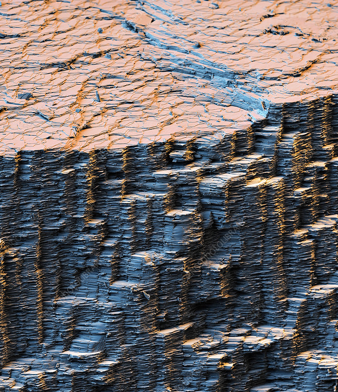 Nacre crystal layers, SEM