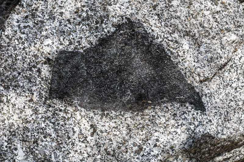 A gneiss enclave in granite.