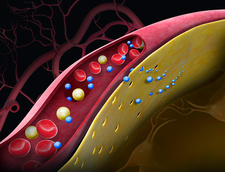 Drug crossing the blood-brain barrier, illustration