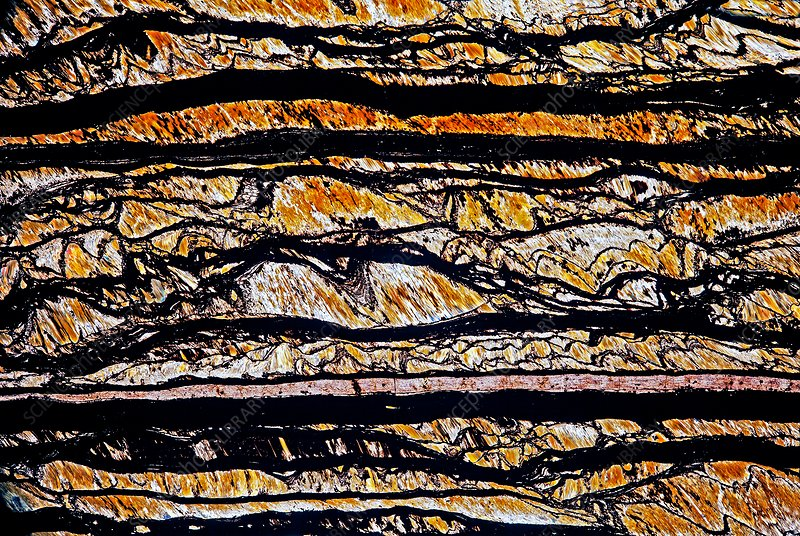 Tiger eye, thin section micrograph