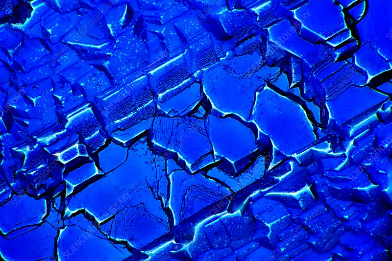 Silicon solar cell, light micrograph