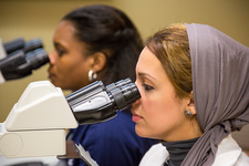 Women using microscopes