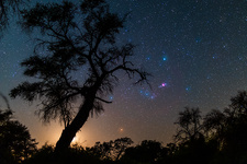 Orion rising with the Moon in Namibia