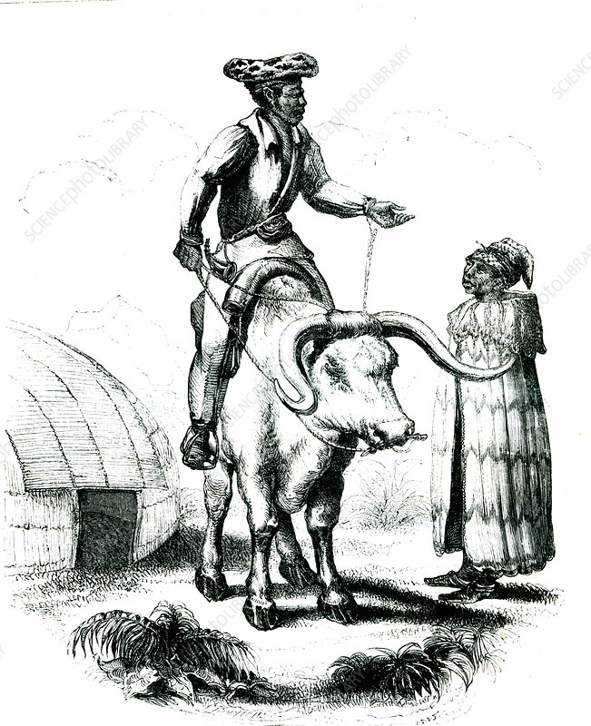 19th Century Cafres people, illustration