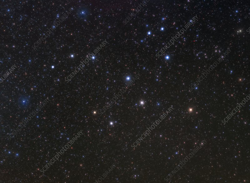 Lepus constellation, optical image - Stock Image - C036 ...