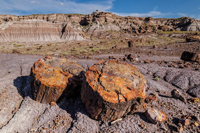 Petrified Forest National Park, USA