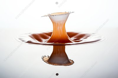 Water and milk drop impact, high-speed photograph